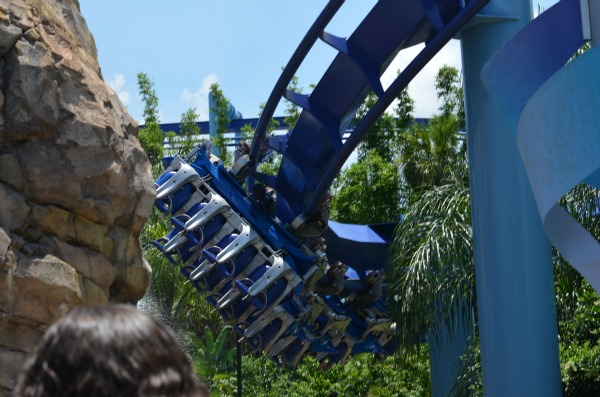 Manta at Sea World
