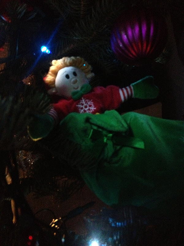 Erich Elf Magic in tree