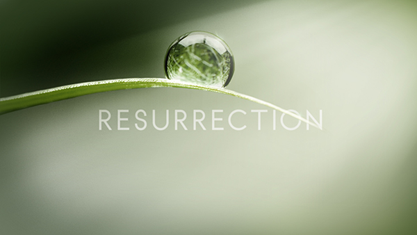 ABC's Resurrection Logo