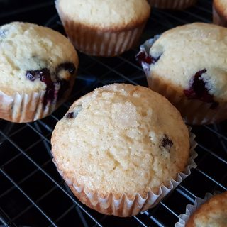 Easy To Make Blueberry Muffins
