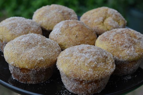 Pumpkin Donut Muffins #shop