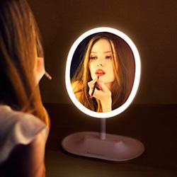 Hamswan Vanity Mirror