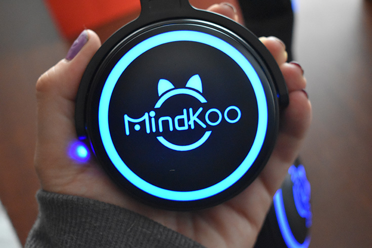 MindKoo Unicat Wireless Cat Ear Headphones