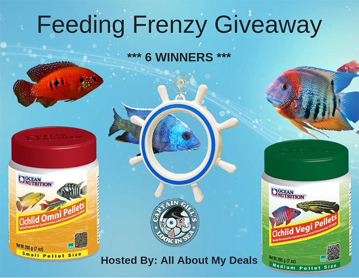 Feeding Frenzy Giveaway