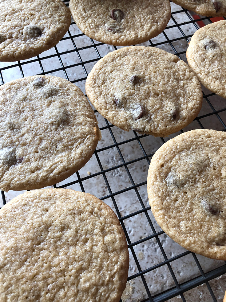 Protein Powder Cookies Recipe