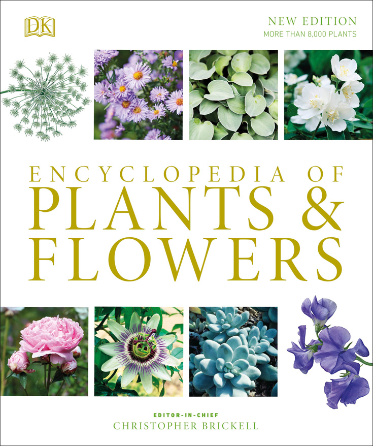 Report incorrect product information Christopher Brickell Encyclopedia of Plants and Flowers