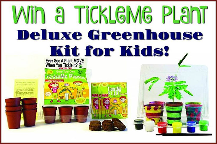 TickleMe Plant Deluxe Greenhouse Kit For Kids Giveaway