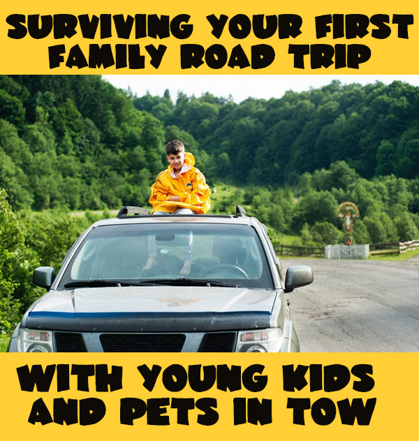 Surviving Your First Family Road Trip with Young Kids and Pets in Tow